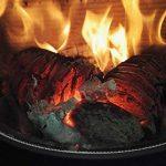 humidité bois de chauffage TOP 12 image 1 produit