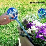 InnovaGoods 2 globes d'arrosage automatique en verre faits main Durée 10 jours boules d'irrigation goutte à goutte Plantes fleurs 350 ml x2 29 cm de la marque InnovaGoods image 1 produit