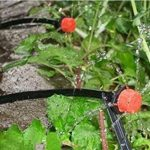 installation système irrigation goutte à goutte TOP 6 image 1 produit
