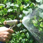 jet arrosage pelouse TOP 4 image 2 produit