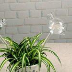 Kicode Globe d'auto-arrosage Ampoules d'eau végétale Escargots / Flamingo Shape Design Verre transparent soufflé à la main de la marque Kicode image 5 produit