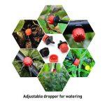 kit arrosage automatique jardin TOP 11 image 4 produit