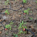 matériel arrosage automatique pelouse TOP 10 image 4 produit