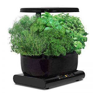 Miracle-Gro AeroGarden Harvest avec kit de capsules de graines d'herbes gourmets (noir) de la marque AeroGarden image 0 produit