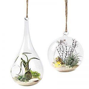 Mkouo Lot de 2 Vase Suspendu de Verre Boule Pour Fleur Décoration Pots à suspendre Air Plante Terrariums de Jardin Maison Mariage de la marque Mkouo image 0 produit