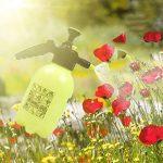 PB PEGGYBUY 2L pression Spray bouilloire Fleurs Arrosoir outils de jardinage Pulvérisateur à pompe à main de la marque PB PEGGYBUY image 3 produit