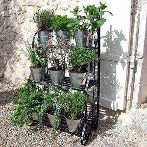 Plant Theatre Présentoir en métal pour plantes et fleurs, design classique-Noir de la marque Plant Theatre image 0 produit