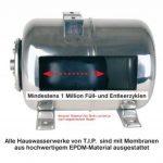 pompe arrosage inox TOP 0 image 2 produit