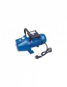 Pompe D'Arrosage Ecop 160 1000W-3600L/H-4,2Bars-Corps Fonte de la marque DIPRA image 0 produit