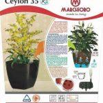 Pot plante intérieur avec réserve d'eau CEYLON 35 NOIR de la marque Marchioro image 3 produit