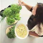 Potager urbain avec arrosage intelligent, blanc, 3 pots, avec graines aromatiques de la marque Citysens image 3 produit