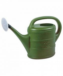 Ribiland 00588 Arrosoir Plastique Vert 12 L de la marque Ribiland image 0 produit
