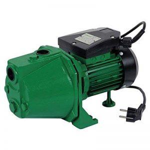Ribiland 01314 Pompe à Eau de Surface Vert 970 W de la marque Ribiland image 0 produit