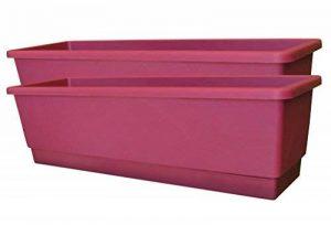 Set de 2 balconièress couleur Cerise 50x16x14 cm,avec réserve d'eau de la marque Botanyland image 0 produit