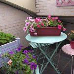 Set de 2 balconièress couleur Cerise 50x16x14 cm,avec réserve d'eau de la marque Botanyland image 1 produit