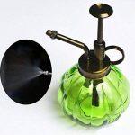 SOMAY Vintage Petit Arrosoir verre Outils Bouteille de jardinage pour les plantes Bonsai Fleurs (Green) de la marque SOMAY image 2 produit