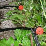 STAR SSTO 25M Micro Flow Drip Watering Irrigation Kits Système Self Plant Kits d'arrosage de tuyaux de jardin 30 Drippper Automatic Garden Plant Système d'eau de serre de la marque STAR SSTO image 1 produit
