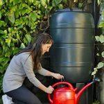 Strata Ward GN335 Tonneau récupérateur d'eau 210l Récupérateur d'eau Green de la marque Strata image 1 produit