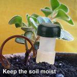 système arrosage plantes vacances TOP 12 image 4 produit