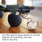 système arrosage plantes vacances TOP 9 image 4 produit