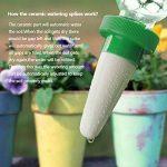 TIMESETL 4er Automatique plante d'irrigation d'eau distributeur cône en céramique tête plante verseur goutte à goutte d'irrigation pour jardin, plante d'intérieur, fleurs de la marque TIMESETL image 2 produit
