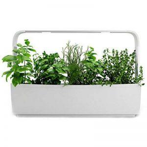 Tregren T12 Potager d'intérieur Connecté 12 plantes, Kit prêt à pousser et Jardinière Autonome pour herbes aromatiques, petits légumes, fleurs - Cultivez avec votre application smartphone - Blanc de la marque Tregren image 0 produit