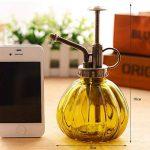 Vintage Petit Arrosoir verre Outils Bouteille de jardinage pour les plantes Bonsai Fleurs (Yellow) de la marque SOMAY image 1 produit