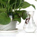 Wady Distributeur d'eau d'irrigation, Distributeur d'eau pour plantes d'arrosage automatique pour plantes (Lot de 6) de la marque Wady image 5 produit