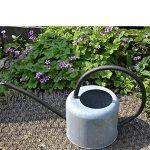 Wangxn Arroseur en métal galvanisé Visite Vieux rétro Cuir jardinage 1.7litres old zinc color Photo Color de la marque WANGXN image 2 produit