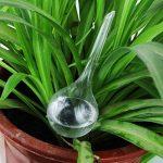 Wetrys Lot de 4plantes d'intérieur en PVC globes d'arrosage Pointes Aqua Piquets automatique de système d'arrosage automatique ampoules Boule, 2tailles par de la marque Wetrys image 1 produit
