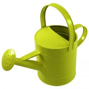 Young Gardener - Enfants - Arrosoir jaune de la marque Young Gardener image 0 produit